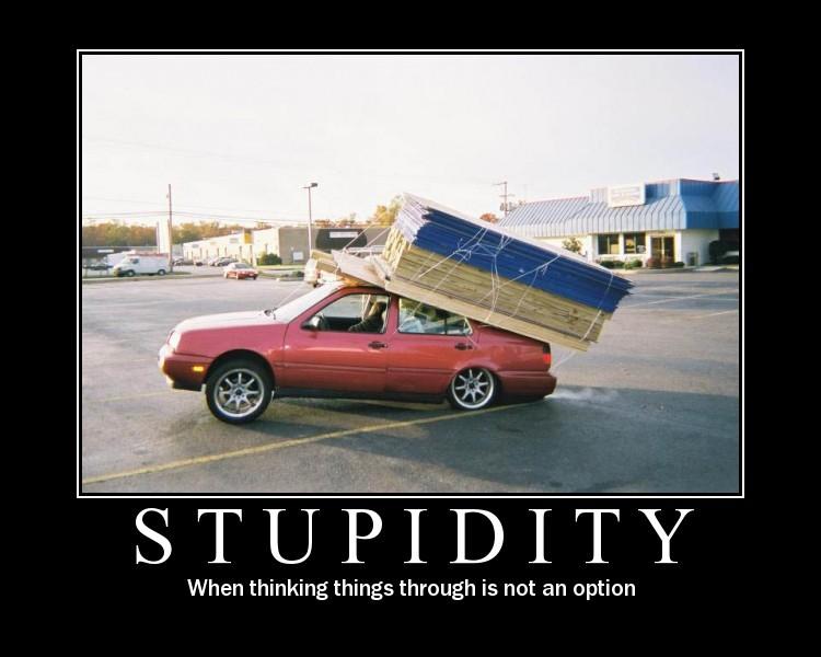 Stupid-Lumber